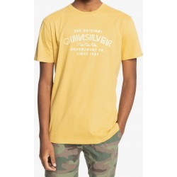 QUICK-SILVER WIDER MILES TEES EQYZT06328 YHP0